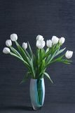 White tulips in vase. On black background Royalty Free Stock Images
