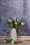 White tulips in a white jug. White tulips arranged in a white jug with raffia on the handle with a blue textured background with space for text Stock Photo