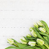 White tulips on white tablecloth. Bouquet, top view, copy space, holiday background Stock Photography