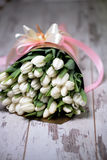 White tulips on white wooden background. Pink ribbon Stock Image