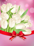 White Tulips With Bow. EPS 10 Stock Photos