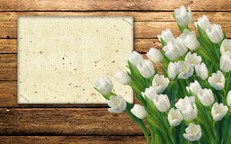 White tulips. On the wooden background Royalty Free Stock Photos