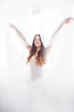 White tulle Stock Photography