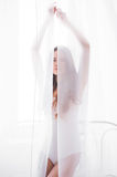 White tulle Royalty Free Stock Photography