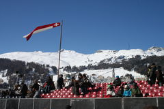 White turf grandstand Royalty Free Stock Photography