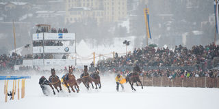 White Turf in St. Moritz, Switzerland Royalty Free Stock Image
