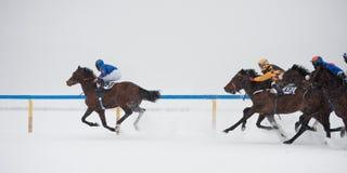 White Turf in St. Moritz, Switzerland Stock Photography
