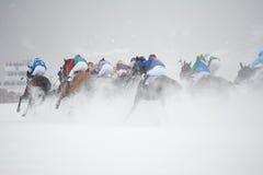 White Turf in St. Moritz, Switzerland Stock Photo