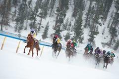 White Turf in St. Moritz, Switzerland Stock Photos