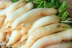 White turnips Royalty Free Stock Photography