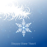 White twig with snowflake Stock Images