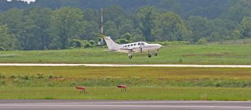 White Twin Prop Landing Stock Photography