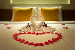 White two towel swans and red rose petals on the bed, Honeymoon decoration stock images