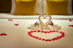 White two towel swans and red rose petals on the bed, Honeymoon decoration stock photography