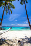 White umbrella and chairs under coconut tree Stock Photography