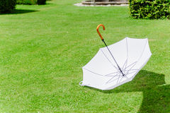 White umbrella in the grass Stock Photo