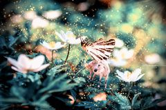 White unicorn with butterfly wings on flower royalty free stock photo