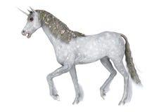 White Unicorn Stock Photo