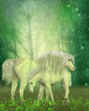 White Unicorn Family Stock Photography