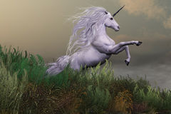 White Unicorn on Mountain Stock Photos