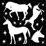 White unicorn silhouettes set with stars on black backdrop. Vector unicorn horse, vector magic animal black illustration Stock Images
