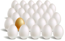 White & unique gold eggs rows Royalty Free Stock Images