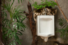White urinal in men`s toilet room Stock Photos