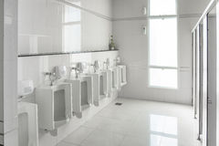 White urinals in clean men public toilet room empty. With big window and light from outside, interior Royalty Free Stock Photos