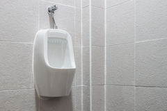 White urinals. Stock Images
