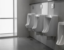 White urinals Royalty Free Stock Photo