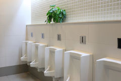 White urinals. Stock Photography