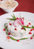 White uzbek salad Stock Photography