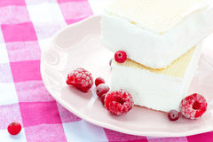 White vanilla ice-cream with waffles and berries. Closeup. Royalty Free Stock Image
