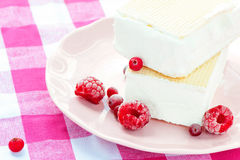 White vanilla ice-cream with waffles and raspberries. Closeup. Stock Photo