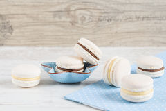 White vanilla macaroons. Pastel colored Stock Images