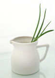 White vase. With green onion on the glass table Stock Images