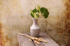 White vase with a bouquet of fragrant yellow flowers and leaves of linden and dried grass hedgehogs. Latin D?ctylis glomer?ta royalty free stock photo