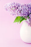 White vase with a bouquet of lilacs Stock Photography