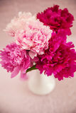 White vase with peonies Royalty Free Stock Photos