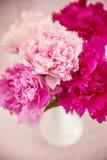 White vase with peonies Royalty Free Stock Photo