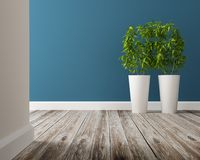 White vase and tree on wood floor Royalty Free Stock Photo