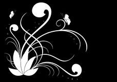 White vector floral illustration on black Stock Photos