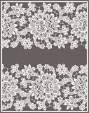 White Vector Lace Royalty Free Stock Image
