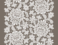 White Vector Lace. Seamless Pattern. Royalty Free Stock Photography