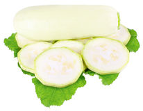 White vegetable marrow on white background. Stock Image