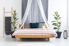 Free White Veil Over Wooden Bed Stock Photography - 110268772