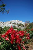 White village, Mojacar Pueblo, Andalusia, Spain. View of white village with red flowers in the foreground, Mojacar Pueblo, Costa Almeria, Almeria Province Stock Photo