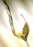 White vine Stock Image