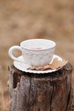 White vintage cup. With dry oak leave on stump on beige background outdoors Stock Image