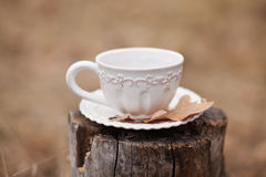 White vintage cup. With dry oak leave on stump on beige background outdoors Royalty Free Stock Images